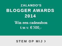 Zalando's Blogger Awards 2014