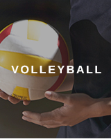 Volleyball Shop in der Zalando.ch Sportwelt